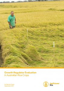 Growth Regulator Evaluation in Australian Rice Crops - image