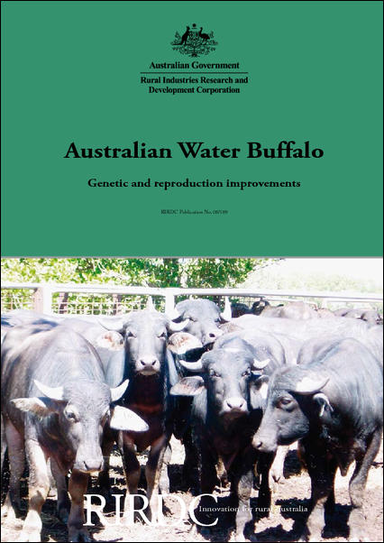 Australian Water Buffalo - Genetic and reproduction improvements - image