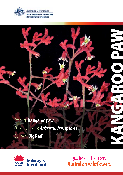 Quality Specifications for Kangaroo Paw - image
