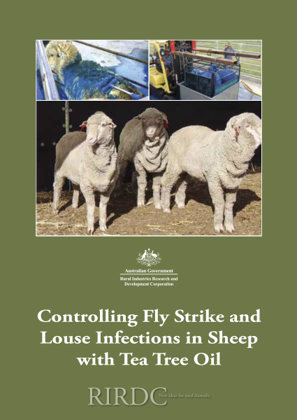 Controlling Fly Strike and Louse Infections in Sheep with Tea Tree Oil - image
