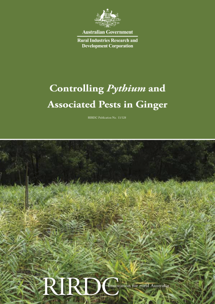 Controlling Pythium and Associated Pests in Ginger - image