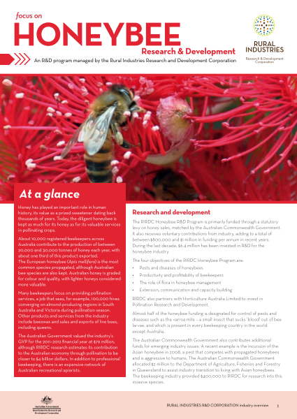 Focus on Honeybee Research and Development - image