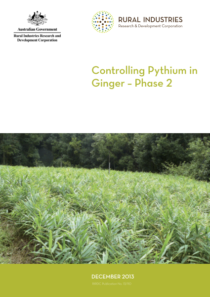 Controlling Pythium in Ginger – Phase 2 - image
