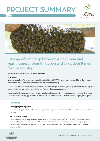 Interspecific matings between Apis cerana and Apis mellifera. Does it happen and what does it mean for the industry? - image
