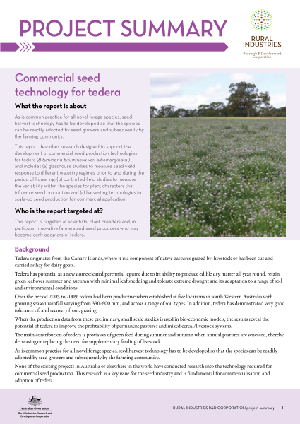 Commercial seed technology for tedera - image