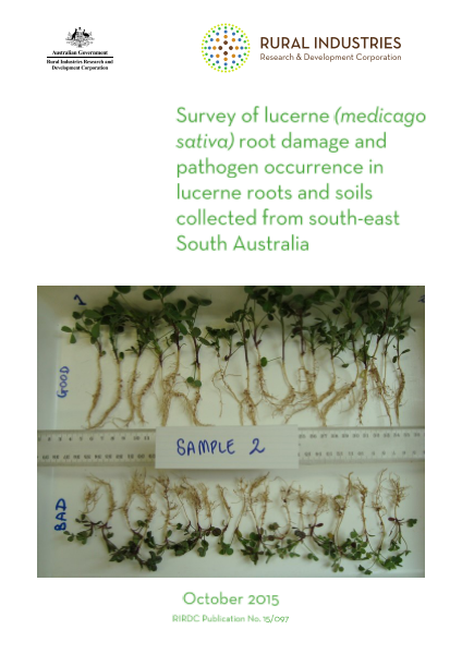 Survey of lucerne (Medicago sativa) root damage and pathogen occurrence in lucerne roots and soils collected from south-east South Australia - image