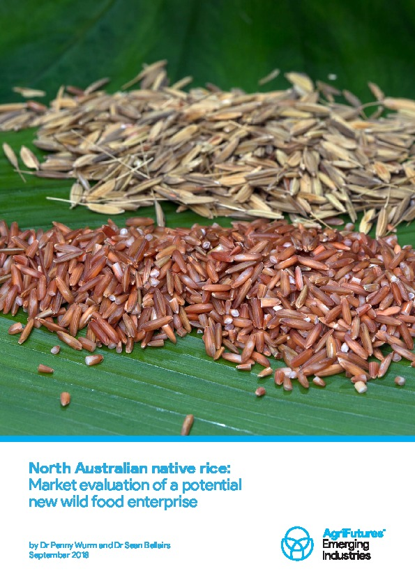North Australian native rice: Market evaluation of a potential new wild food enterprise - image
