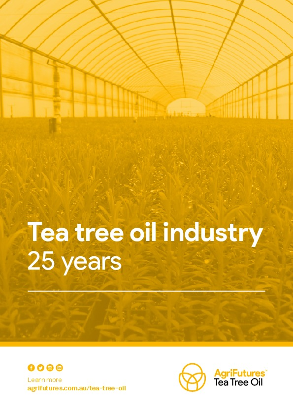 Fact sheet: Tea tree oil industry - 25 years - image