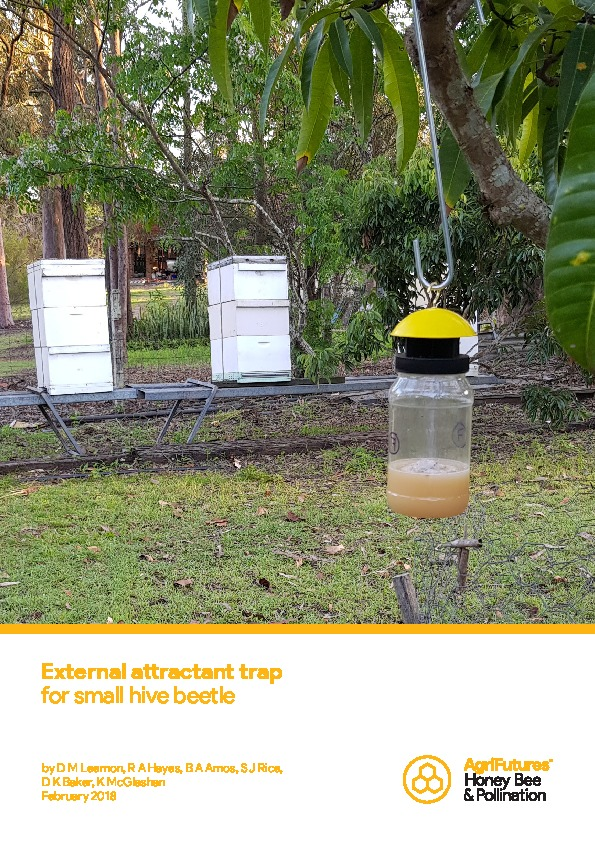 External attractant trap for small hive beetle - image