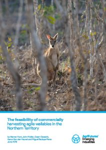 The feasibility of commercially harvesting agile wallabies in the Northern Territory - image