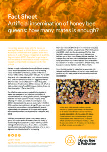 Fact sheet: Artificial insemination of honey bee queens - how many mates is enough? - image