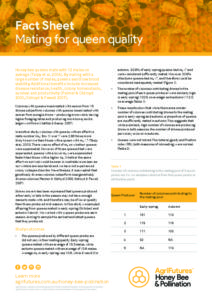 Fact sheet: Mating for queen quality - image