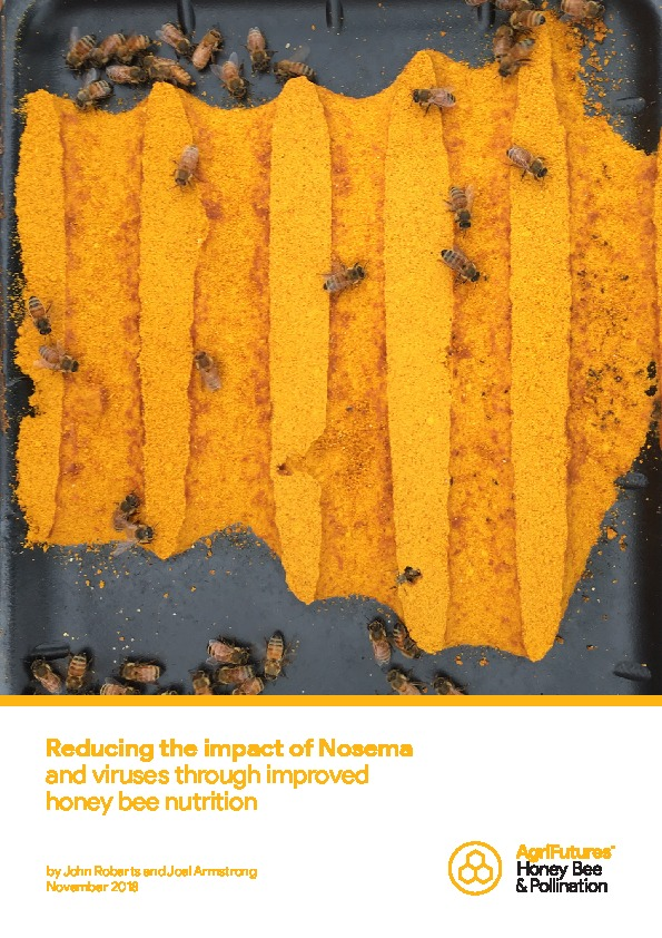 Reducing the impact of Nosema and viruses through improved honey bee nutrition - image