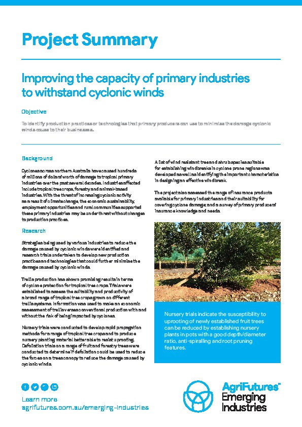 Project Summary: Improving the capacity of primary industries to withstand cyclonic winds - image