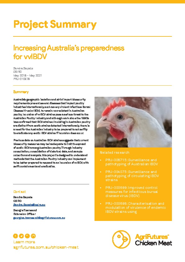 Project Summary: Increasing Australia's preparedness for vvIBDV - image