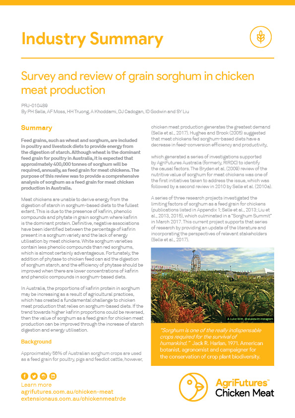 Industry Summary: Survey and review of grain sorghum in chicken meat production - image
