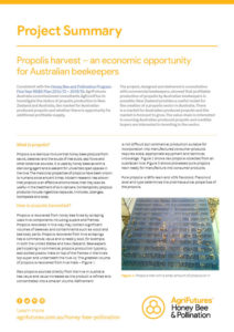 Propolis harvest – an economic opportunity for Australian beekeepers - image