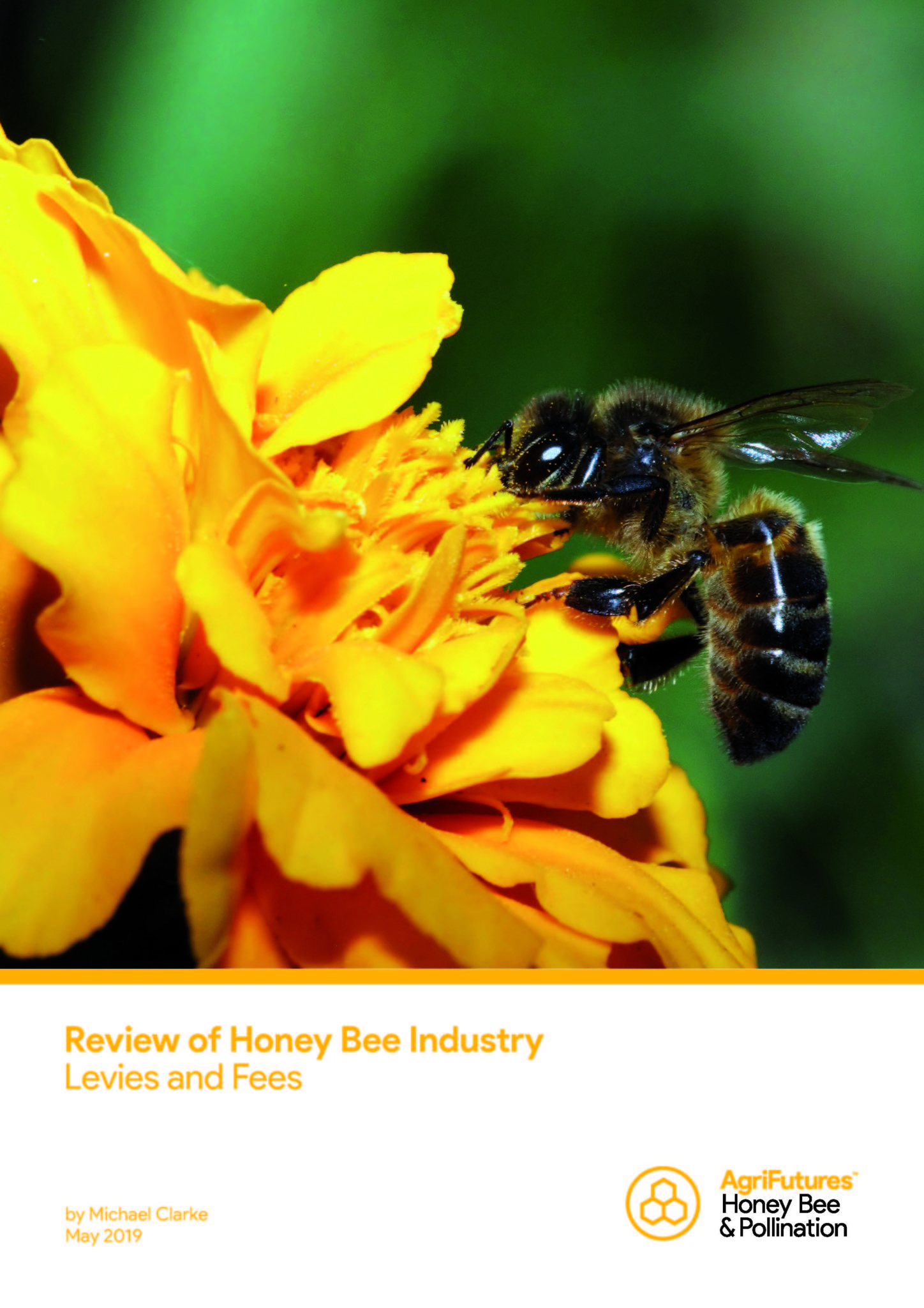 Review of the Honey Bee Industry Levies and Fees - image