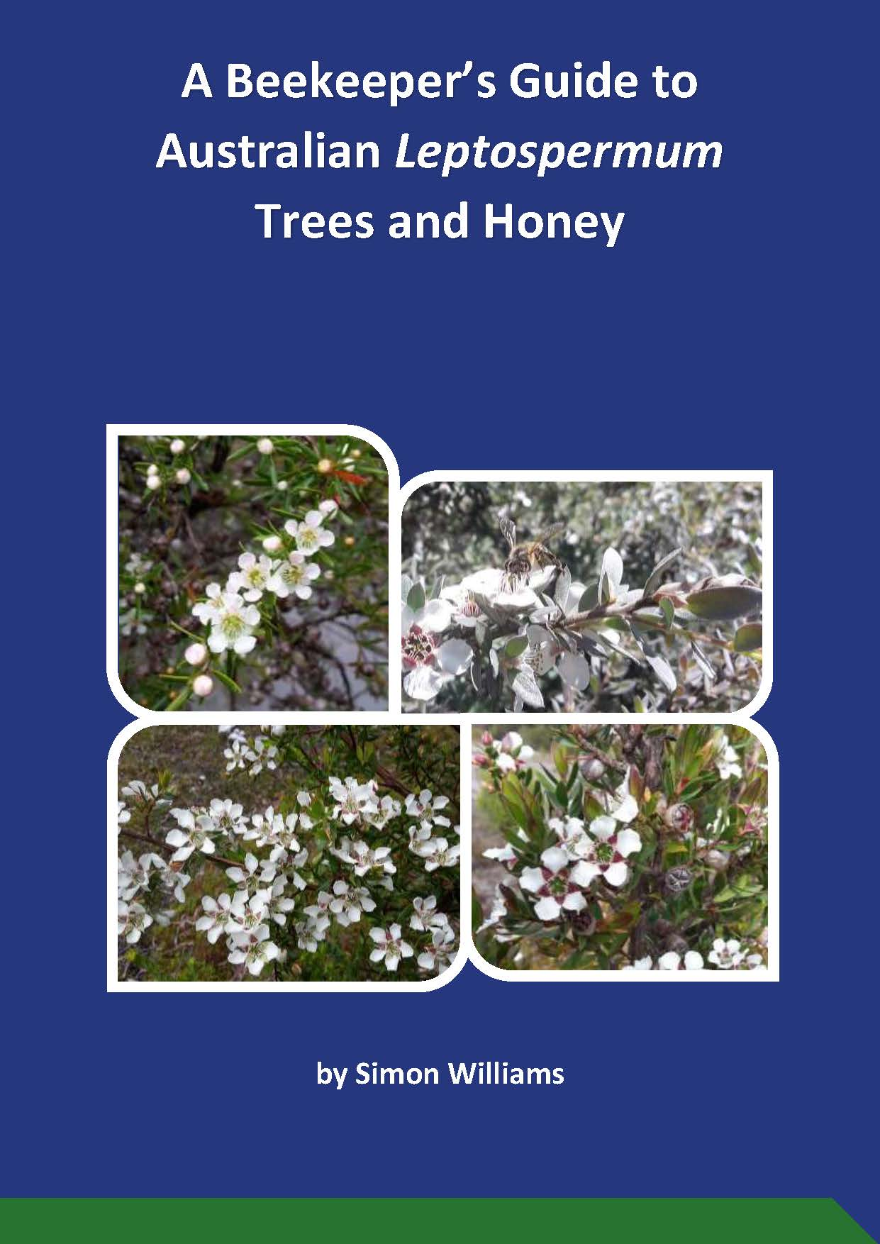 A Beekeeper's Guide to Australian Leptospermum Trees and Honey - image