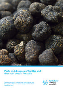 Pests and diseases of truffles and their host trees in Australia - image