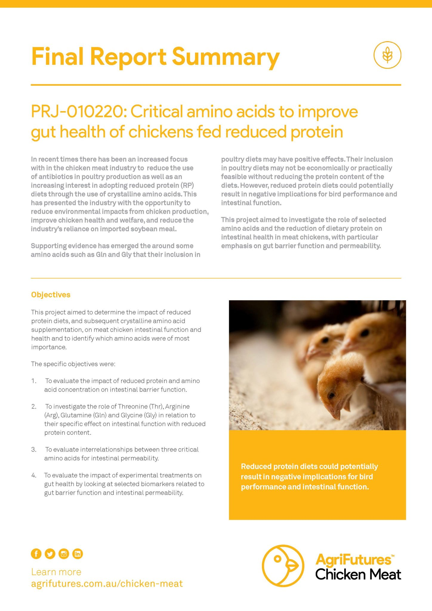 Final Report Summary: Critical amino acids to improve gut health of chickens fed reduced protein - image