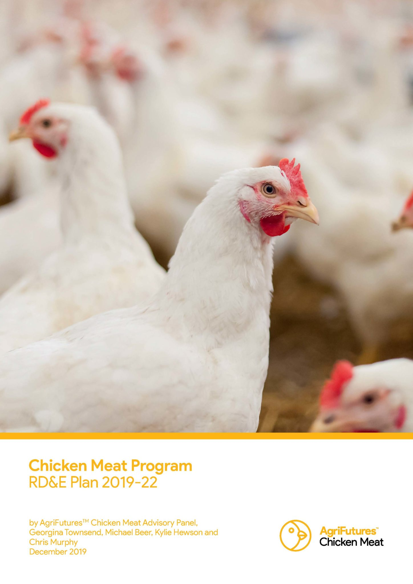 AgriFuturesTM Chicken Meat Program RD&E Plan 2019-22 - image