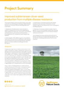 Project summary: Improved subterranean clover seed production from multiple disease resistance - image