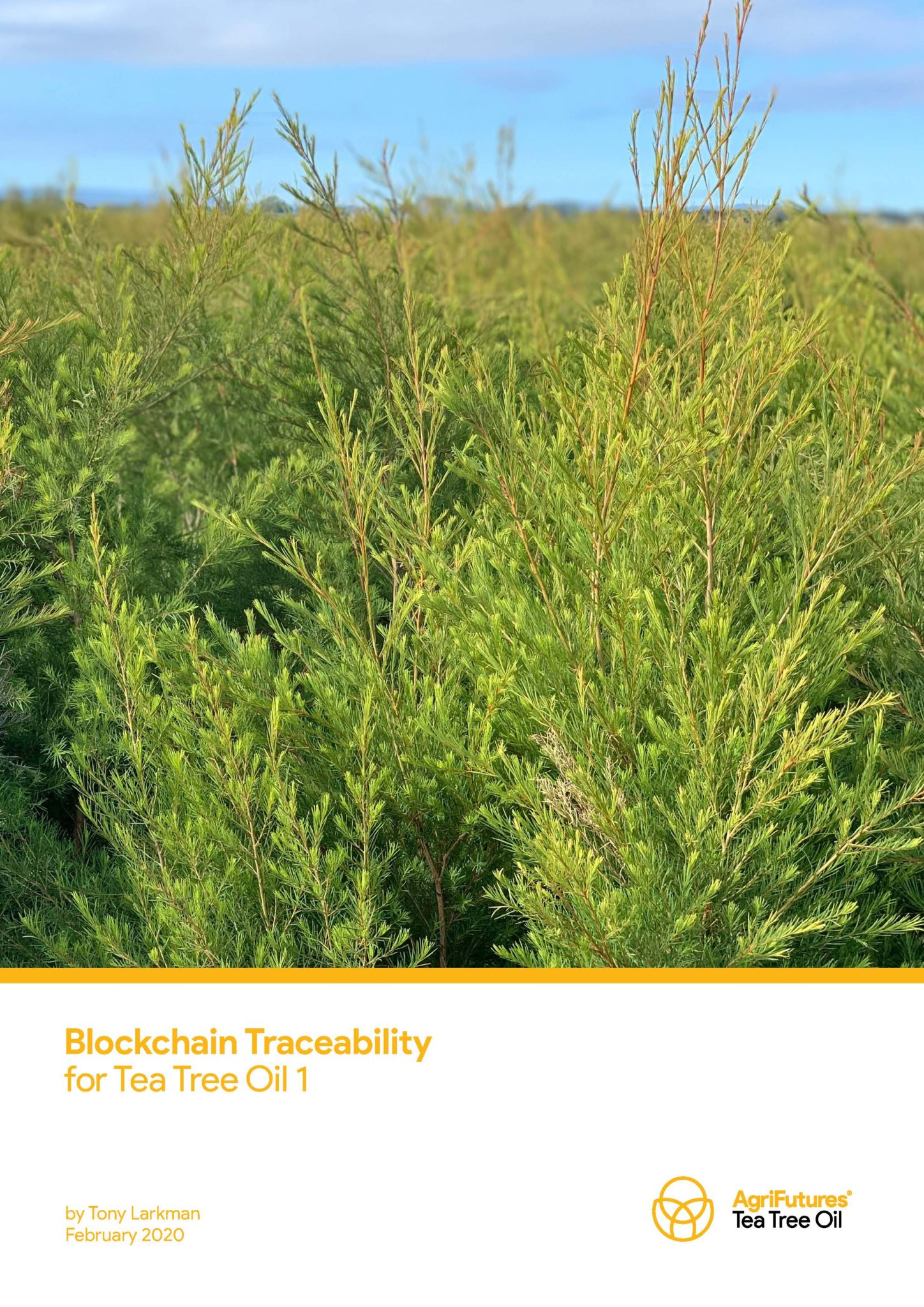 Blockchain Traceability for Tea Tree Oil 1 - image