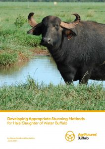 Developing Appropriate Stunning Methods for Halal Slaughter of Water Buffalo - image