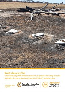 Bushfire Recovery Plan: Understanding what needs to be done to ensure the honey bee and pollination industry recovers from the 2019-20 bushfire crisis - image