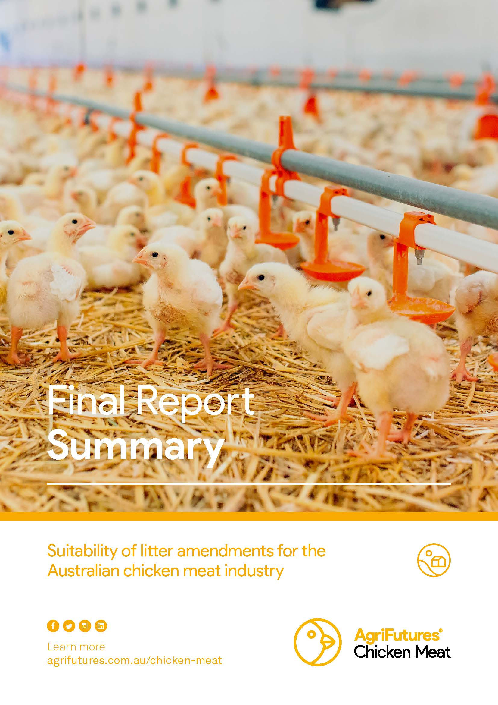 Final report summary: Suitability of litter amendments for the Australian chicken meat industry - image