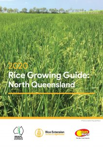 Rice Growing Guide: North Queensland - image