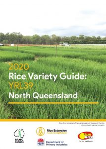 Rice Variety Guide: YRL39 - North Queensland - image