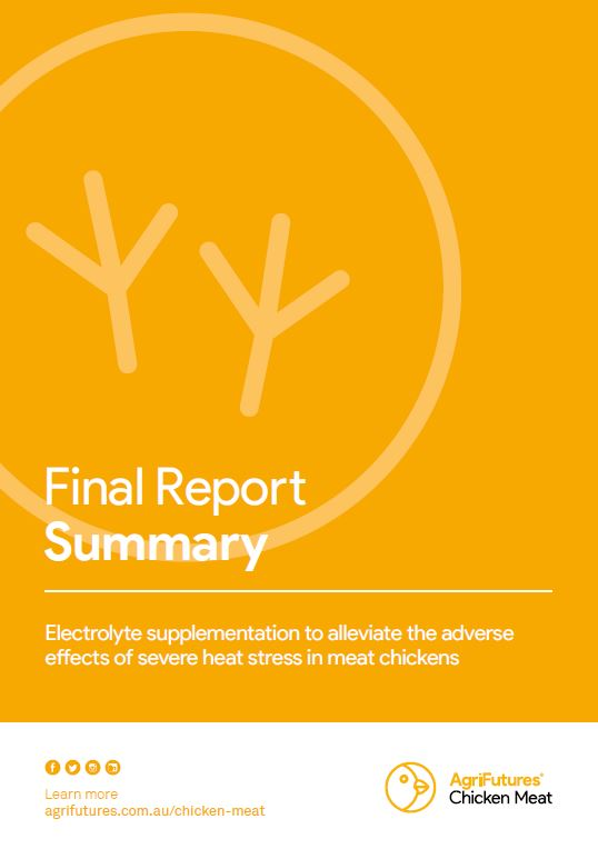 Final Report Summary: Electrolyte supplementation to alleviate the adverse effects of severe heat stress in meat chickens - image