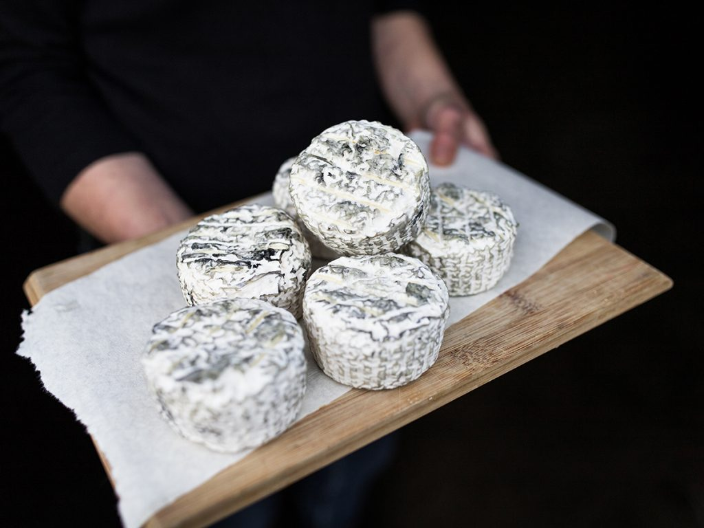 Artisan cheese produced by Cressida Cains, winner of 2020 NSW AgriFutures Rural Women's Award
