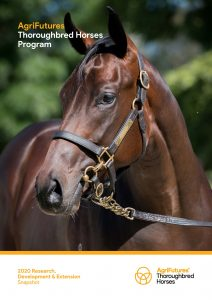 AgriFutures Thoroughbred Horses Program 2020 Research, Development & Extension Snapshot - image