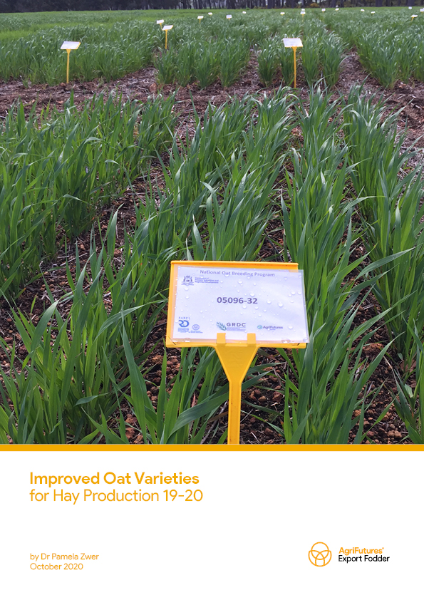 Improved Oat Varieties for Hay Production 19-20 - image