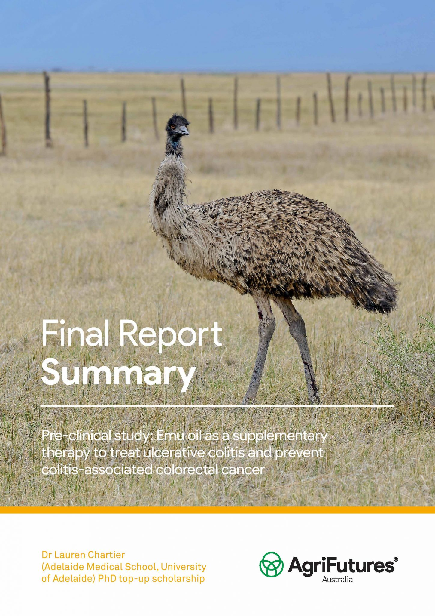 Final Report Summary: Pre-clinical study: Emu oil as a supplementary therapy to treat ulcerative colitis and prevent colitis-associated colorectal cancer - image