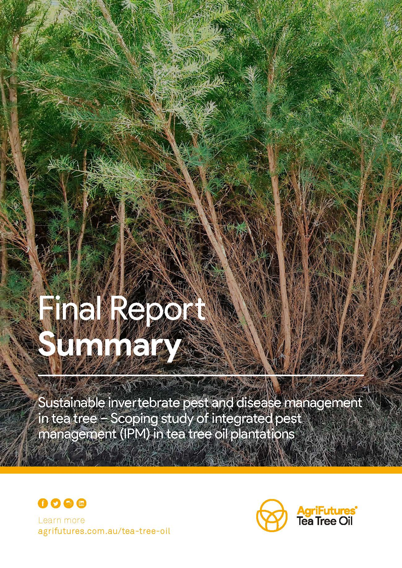 Final report summary: Sustainable invertebrate pest and disease management in tea tree - image