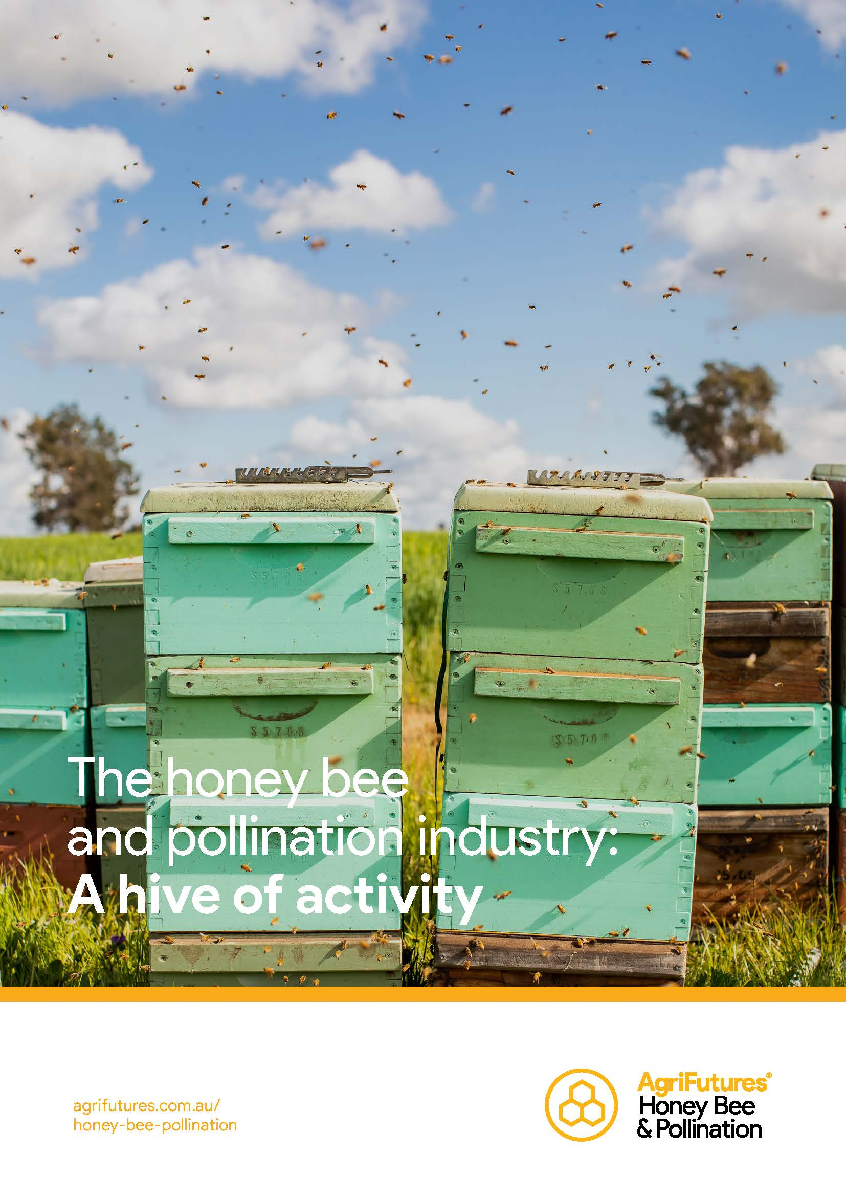 The honey bee and pollination industry: A hive of activity - image