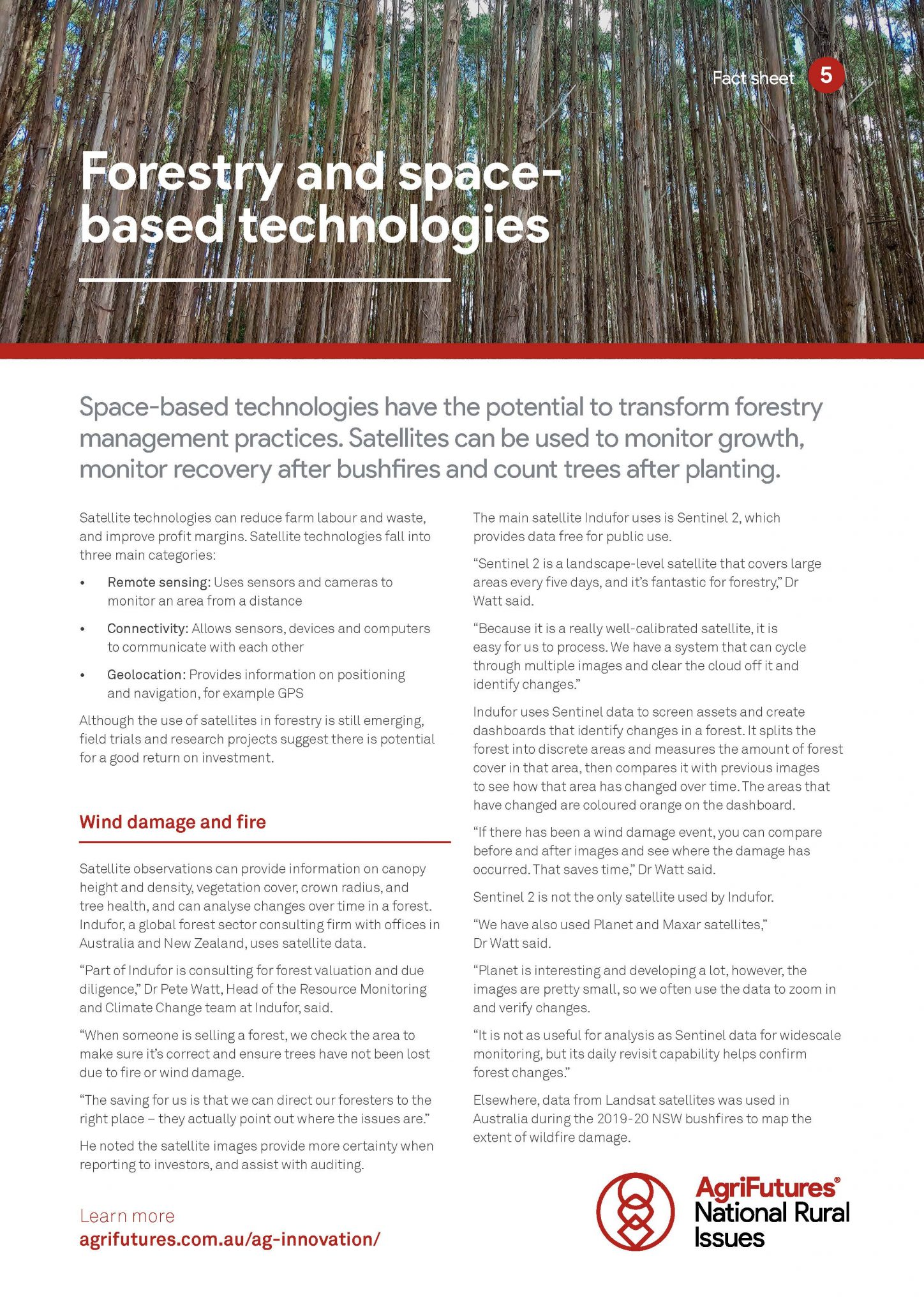 Fact sheet: Forestry and space-based technologies - image