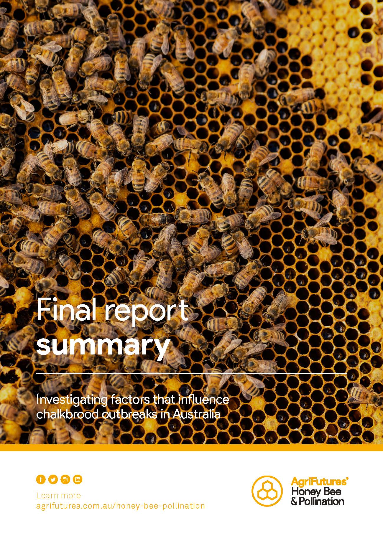 Final report summary: Investigating factors that influence chalkbrood outbreaks in Australia - image