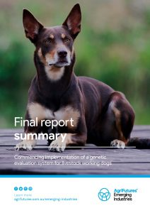 Final report summary: Commencing implementation of a genetic evaluation system for livestock working dogs - image