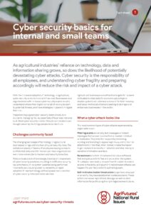 Fact sheet: Cyber security basics for internal and small teams - image