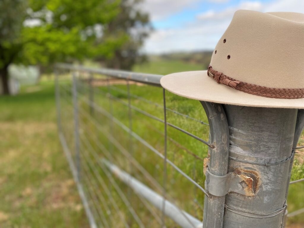 Hat on fence