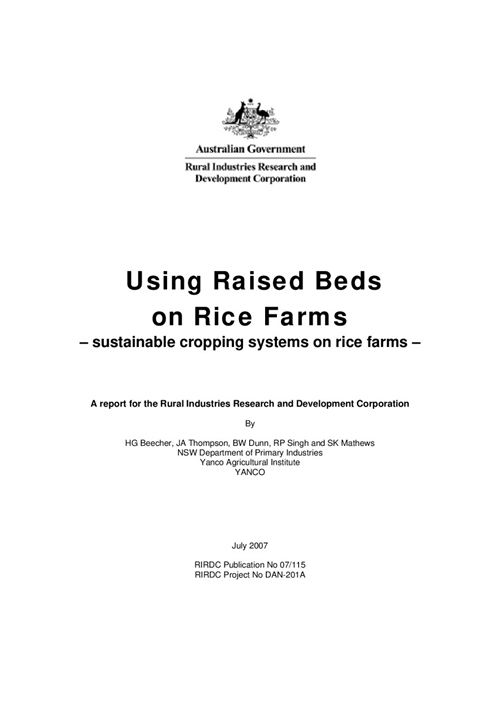 Using Raised Beds on Rice Farms - sustainable cropping systems on rice farms - image