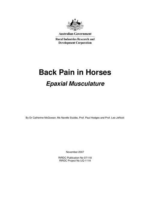 Back Pain in Horses: Epaxial Musculature - image