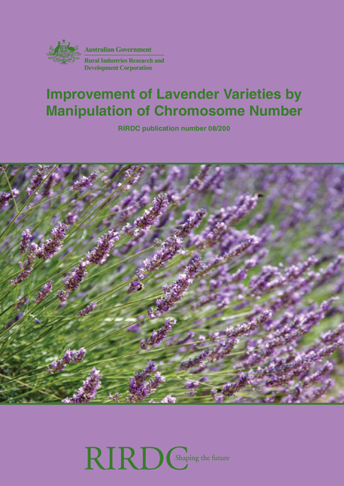 Improvement of Lavender Varieties by Manipulation of Chromosome Number - image