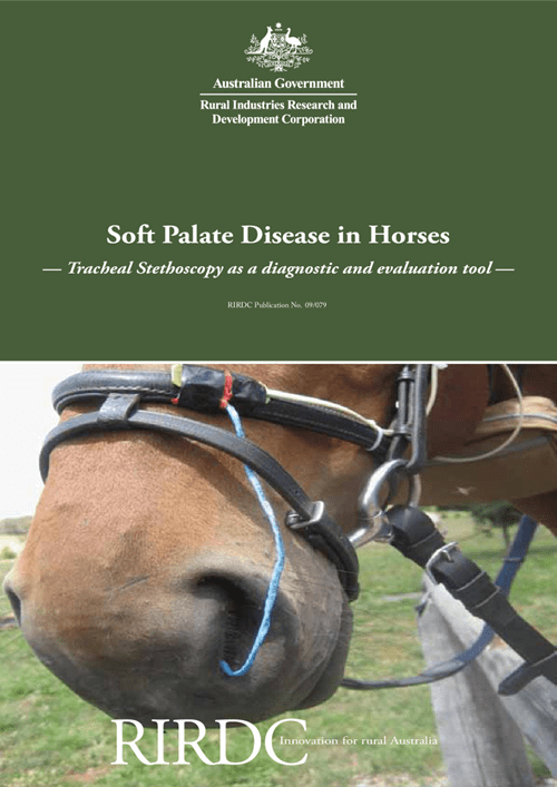 Soft Palate Disease in Horses: Tracheal stethoscopy as a diagnostic and evaluation tool - image