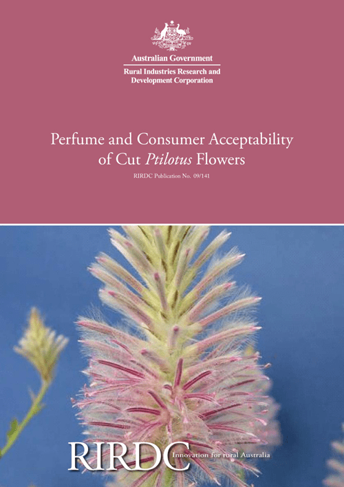 Perfume and Consumer Acceptability of Cut Ptilotus Flowers - image